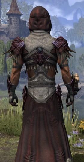 Wayward Guardian Ancestor Silk - Male Robe Close Rear