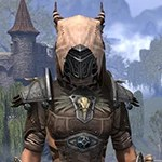 Wayward Guardian Rawhide
