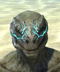 Blessed Life-Tree Face Markings - Argonian Male Front