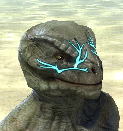 Blessed Life-Tree Face Markings - Argonian Male Side