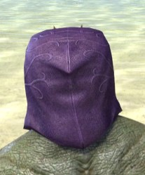 Courtly Crow Mask - Argonian Male Rear