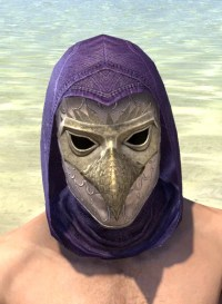 Courtly Crow Mask - Male Front