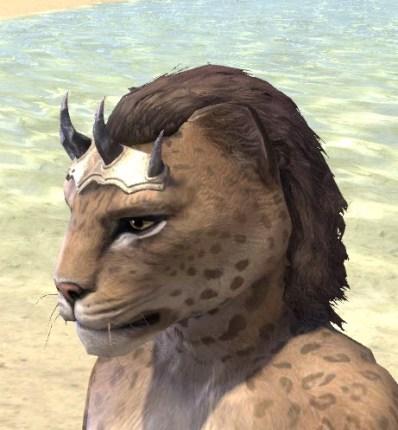 Dagon's Thorns - Khajiit Female Side