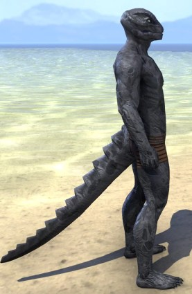 Hollow Void Husk - Argonian Male Right