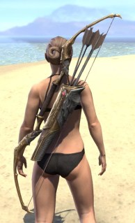 Imperial Champion Bow 1