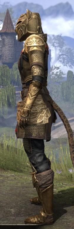 Imperial Champion - Khajiit Female Side