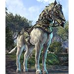 Nenalata Ayleid Horse