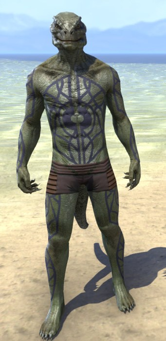 Saliache Scholar Body Markings - Argonian Male Front