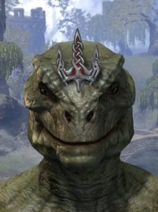 Shrouded Crown - Argonian Male Front