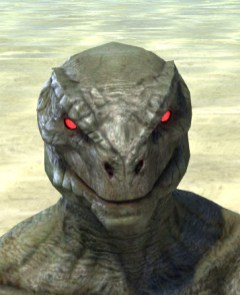 Spiderkith Eyes - Argonian Male Front