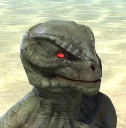 Spiderkith Eyes - Argonian Male Side