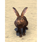 Woodhearth Brown Rabbit
