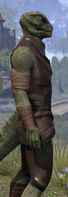 Eveli's Adventuring Leathers - Argonian Male Close Side
