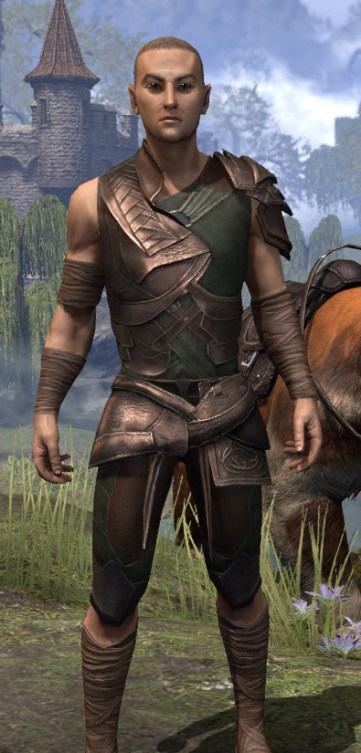 Eveli's Adventuring Leathers - Male Close Front