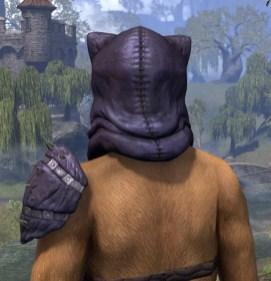 Glorgoloch the Destroyer - Khajiit Female Rear