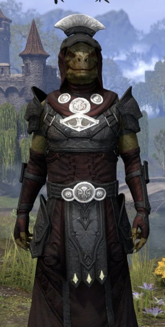 Ivory Brigade Light - Argonian Male Robe Close Front