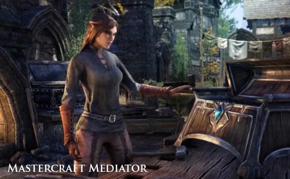 Mastercraft Mediator