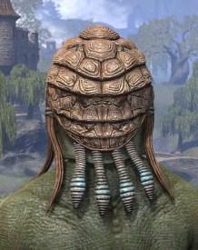 Netch Handler Cap - Argonian Male Rear