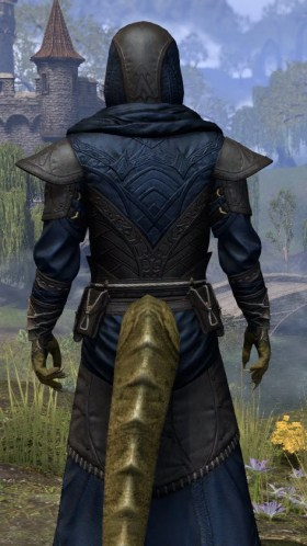 Nibenese Court Wizard - Argonian Male Close Rear