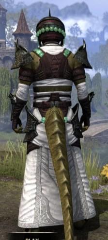 Sul-Xan Light - Argonian Male Robe Rear