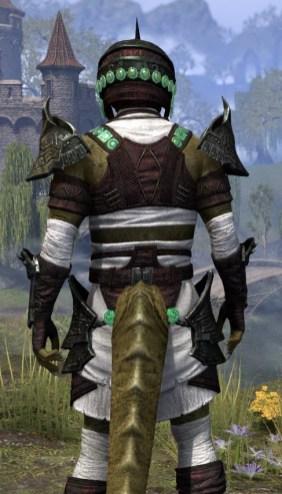 Sul-Xan Light - Argonian Male Shirt Close Rear