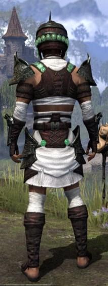 Sul-Xan Light - Male Shirt Rear