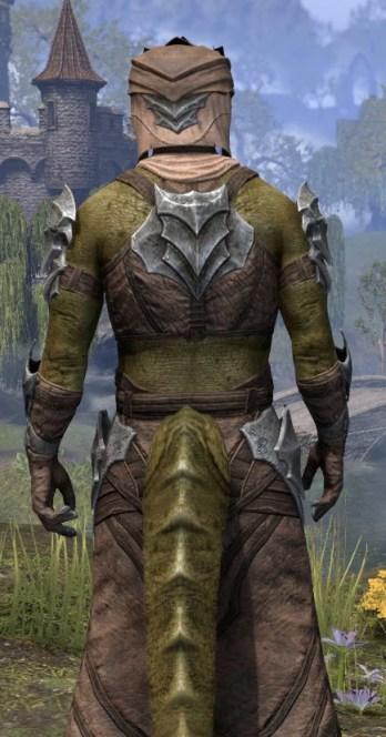 Waking Flame Homespun - Argonian Male Robe Close Rear