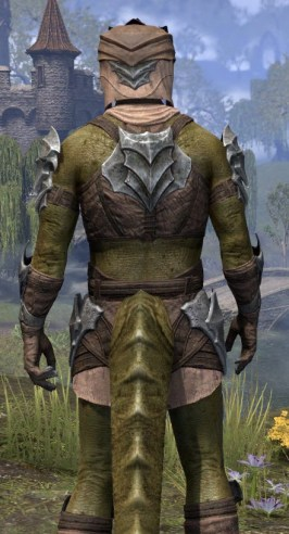 Waking Flame Homespun - Argonian Male Shirt Close Rear