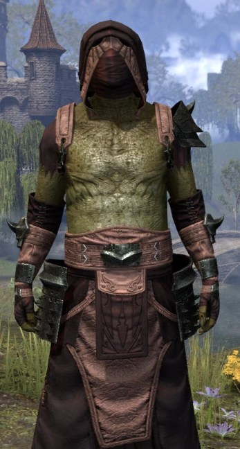 Crimson Oath Light - Argonian Male Robe Close Front