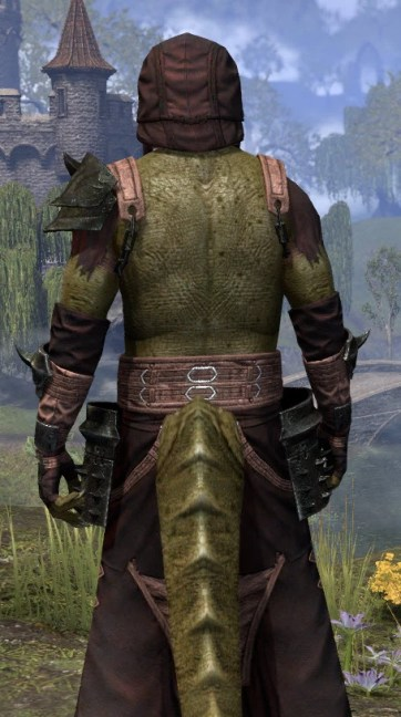 Crimson Oath Light - Argonian Male Robe Close Rear