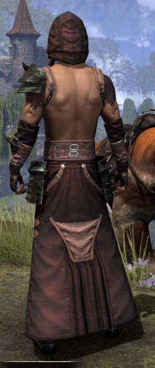 Crimson Oath Light - Male Robe Rear