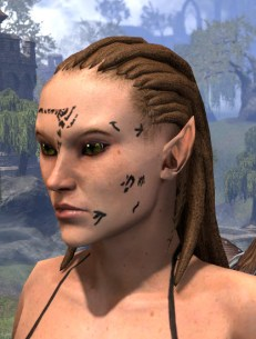 Shattered Chivalry Face Tattoo - Female Side