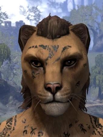 Shattered Chivalry Face Tattoo - Khajiit Female Front