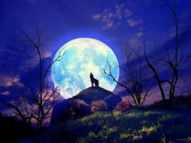 super lua - a maior de 2014