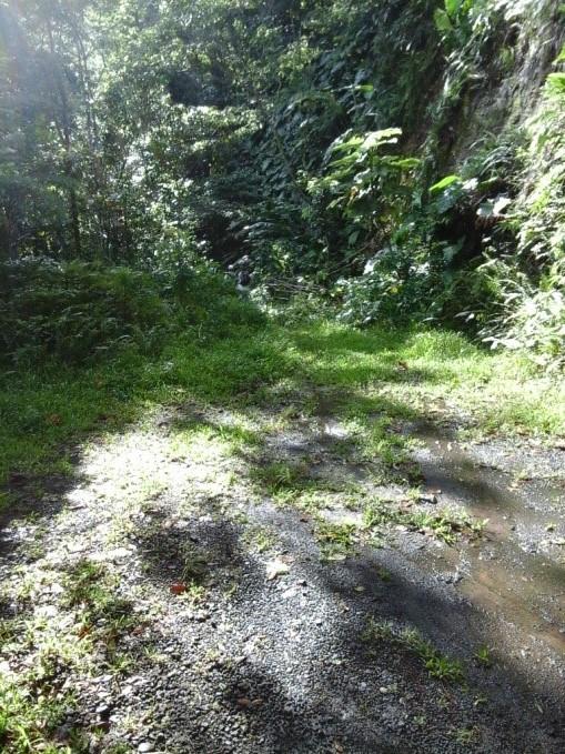 Route en béton sur la trace de la randonnée