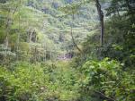 Environnement de la cascade