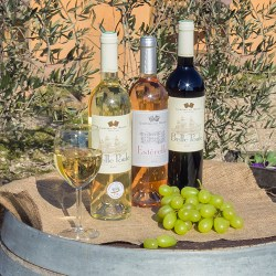 Aperitifs and liqueurs of Provence