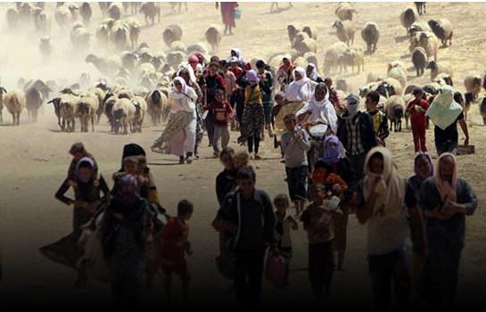 Yazidies de Irak huyen hacia la frontera con Siria. ©REUTERS