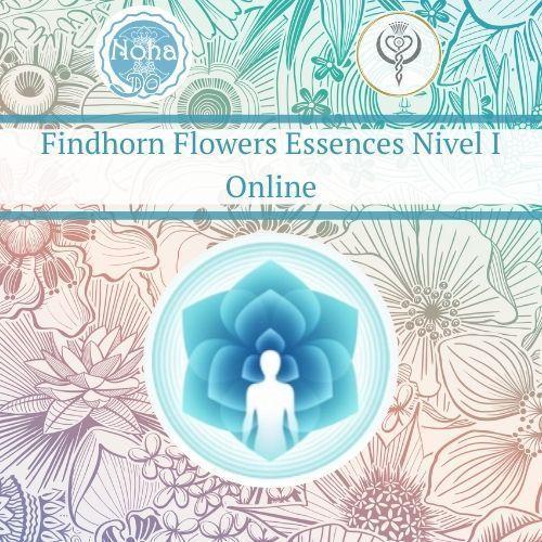 Accredited training of Flower Essences Findhorn online