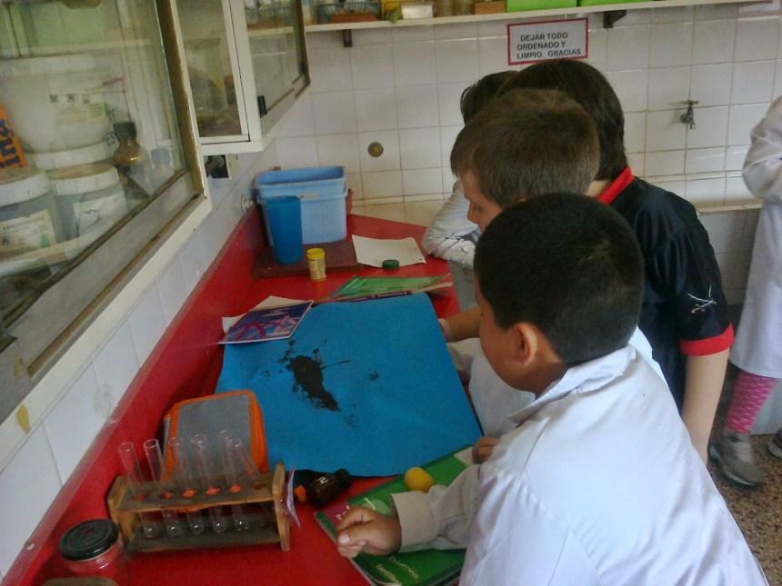 laboratorio escuela