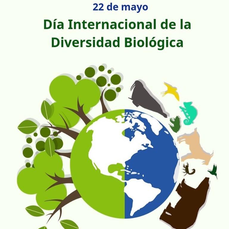 22 de mayo dia de la biodiversidad