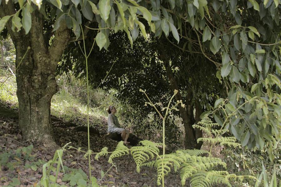 Elaine meditando sob árvores Espaço Presença
