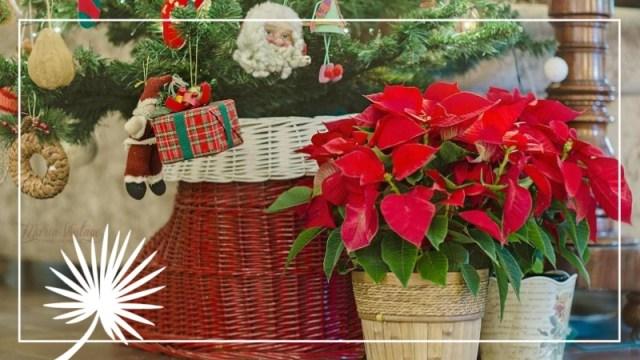 Les Fêtes De Noël à La Découverte Des Traditions Despagne