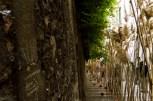 Temps de Flors-Girona 2013