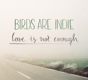 BirdsAreIndie_LoveIsNotEnough_cover