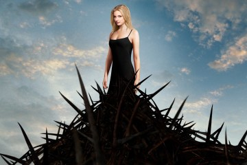 Emily_vancamp_in_revenge-wide