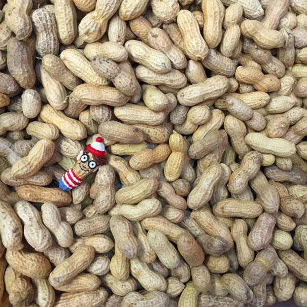 No-peanut-is-safe-from-becoming-my-artwork5__605