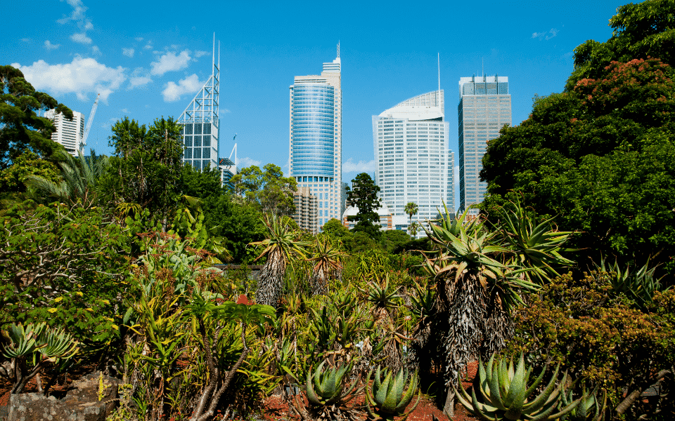 royal-botanic-garden