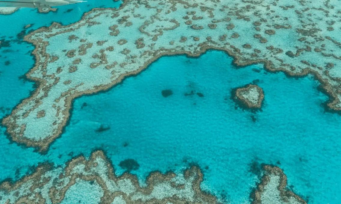 barrera-de-coral (1)