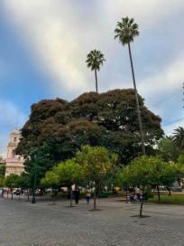 La plaza 9 de Julio, Salta